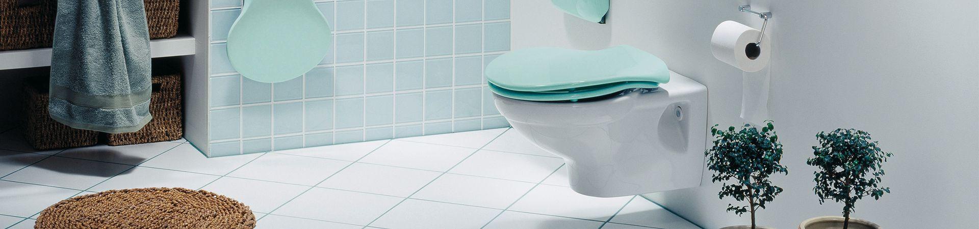 5 weetjes over het toilet - 5 weetjes over het toilet