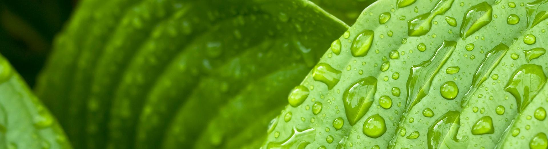 Grohe - 2. Grohe energie en waterbesparende technieken