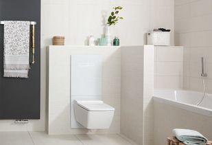 Witte badkamer met in hoogste verstelbaar toilet