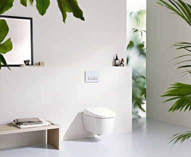 Inspiratie - Het toilet schoonmaken? Zo doe je dat