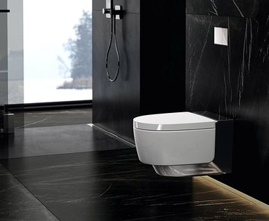 Geberit Rimfree toilet - Geberit AquaClean Mera douchewc