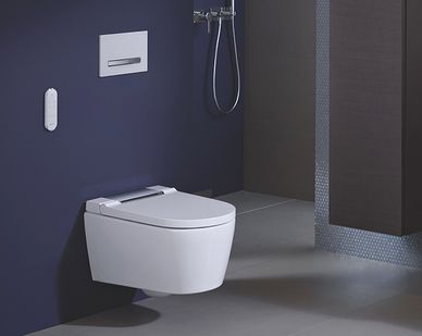 Geberit Rimfree toilet - Geberit AquaClean Sela douchewc
