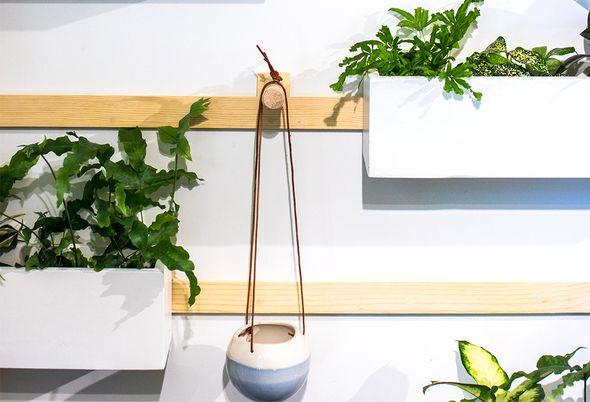 De beste planten voor in de badkamer - 1. Planten badkamer fotos