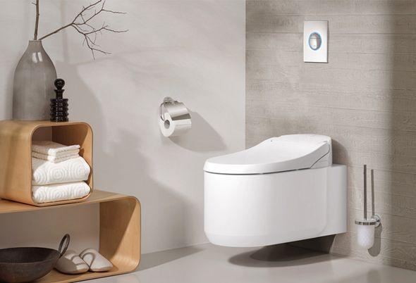 5 weetjes over het toilet - 2. Schoonste openbare toilet / 3. Wetten en regels