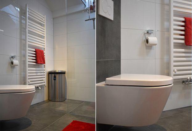 Ruimtelijke badkamer in Mijdrecht - samenvatting