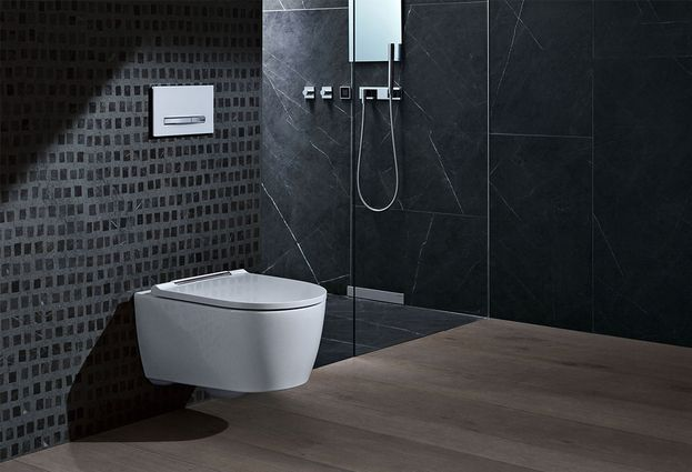 Geberit Rimfree toilet - Geberit One randloos toilet
